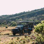 thaba-eco-field-safari