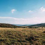 thaba-eco-field